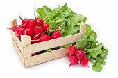 stock photo of wooden crate  - Fresh harvested red radish in wooden crate - JPG