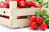 picture of wooden crate  - Macro of fresh red radish vegetable in wooden crate - JPG