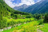 Постер, плакат: Green meadows alpine cottages in Alps Austria