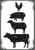 picture of pig  - vector diagram cut carcasses of chicken pig cow lamb - JPG