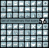image of veterinary  - Set of veterinary flat icons for Web and Mobile Applications - JPG