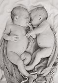 foto of identical twin girls  - twins are sleeping and hugging in soft focus - JPG