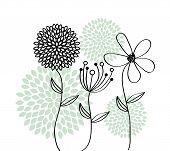 stock photo of obituary  - flowers design over white   background vector illustration - JPG