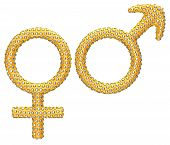 Golden Gender Symbols Incrusted With Gems