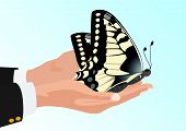 Butterfly in his hands