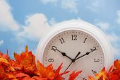 foto of tick tock  - white clock on fall leaves sky background - JPG