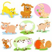 picture of farm animals  - the pet and farm animal vector set - JPG