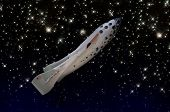 Space Ship One