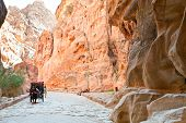 Bedouin Carriage In Siq Passage To Petra City
