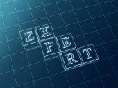 Expert Blueprint