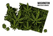 Map Of Washington State United States Of America (usa) Made From Natural Plant Leaves Of Marijuana,  poster