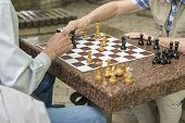 Active Retired People, Old Friends And Free Time, Seniors Having Fun And Playing Chess Game At Park. poster