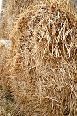 Stack Hay Closeup. The Texture Of Hay Bales Is Stacked In Large Stacks. poster