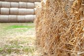 Stack Hay Closeup. Hay Bales Are Stacked In Large Stacks. poster