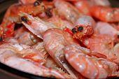 Shrimps. Macro Photo Shrimp. Texture Background Seafood Frozen Shrimp. Sea Food Concept poster
