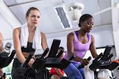 Front view of diverse fit women exercising on exercise bike in fitness center. Bright modern gym wit poster