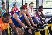 Side view of diverse fit people exercising on exercise bike in fitness center. Bright modern gym wit poster