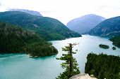 View Of Diablo Lake In The North Cascades National Park In Washington State On An Overcast Summer Da poster