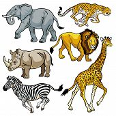 foto of herbivore animal  - set with africa animals - JPG