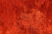Red  Plush