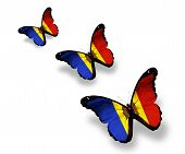 Three Moldavian Flag Butterflies, Isolated On White