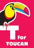 stock photo of toucan  - T for the Toucan an animal alphabet for the kids - JPG