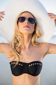 Peaceful sensual blonde in elegant black bikini posing on a beautiful sunny beach