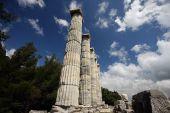 Priene Apollon
