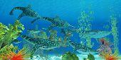 Devonian Doryaspis Fish