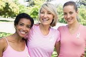 picture of charity relief work  - Portrait of multiethnic female volunteers participating in breast cancer awareness at park - JPG