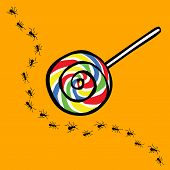 stock photo of ant  - ant and lollipop vector with uninterested concept - JPG