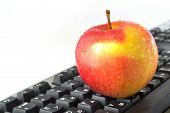 Apple On The Keyboard