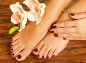 stock photo of legs feet  - Closeup photo of a female feet at spa salon on pedicure procedure  - JPG