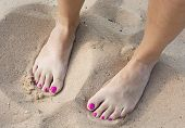 Female Bare Feet In The Sand