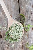 Wooden Spoon With Dried Tarragon