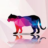 Geometric polygonal leopard, pattern design, vector illustration