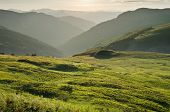 "sunset on highland of ""Biogradska Gora"" National Park, Montenegro"