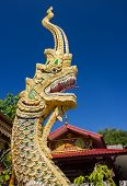 Beautiful golden dragon