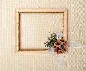 Frame with branch of Christmas tree