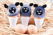 Sheep Egg Warmers