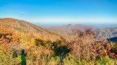 Blue Ridge Parkway National Park  Scenic Mountains
