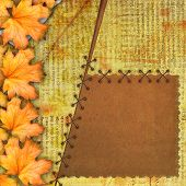 Grunge Cover For Album Or Portfolio On The Newspaper Background With Autumn Foliage