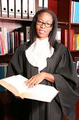 Beautiful Professional Lawyer search  information