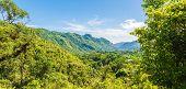 Cuban Natural Landscape