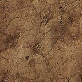 cracks in the ground.