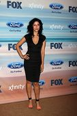 LOS ANGELES - SEP 8:  Stephanie Beatriz at the 2014 FOX Fall Eco-Casino at The Bungalow on September 8, 2014 in Santa Monica, CA
