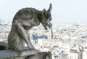pic of gargoyles  - Stone demon gargoyle with city of Paris on background - JPG