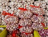 Lots Of White Purple Italian Garlic Bulbs On Display For Sale At An Outdoor Farmers Market