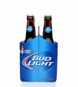 Bud Light Six Pack End View