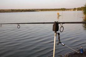 foto of swingers  - Warning for fishing swinger closeup - JPG